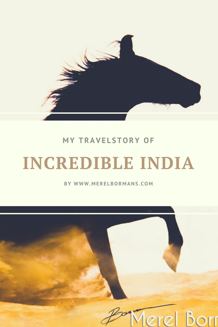 All about my story to Incredible Inda, read all about the amazing horses I met!