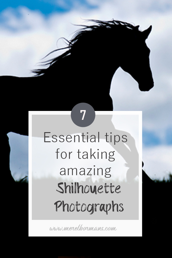 Do you want to know how to take amazing silhouette photo's? Read my tips!