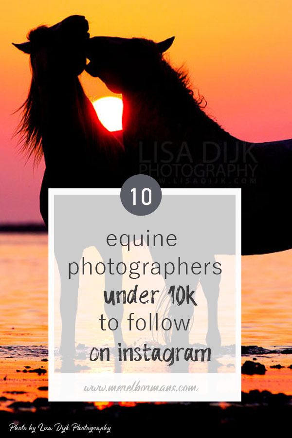 ten equine photographers to follow on instagram? Read my blogpost!